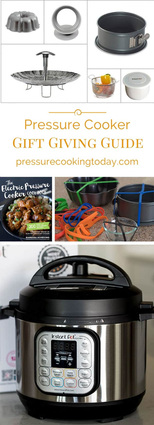 If you're looking for ideas to put on your wishlist, or for the pressure cooker lover in your life, check out my Electric Pressure Cooker Gift Giving Guide.
