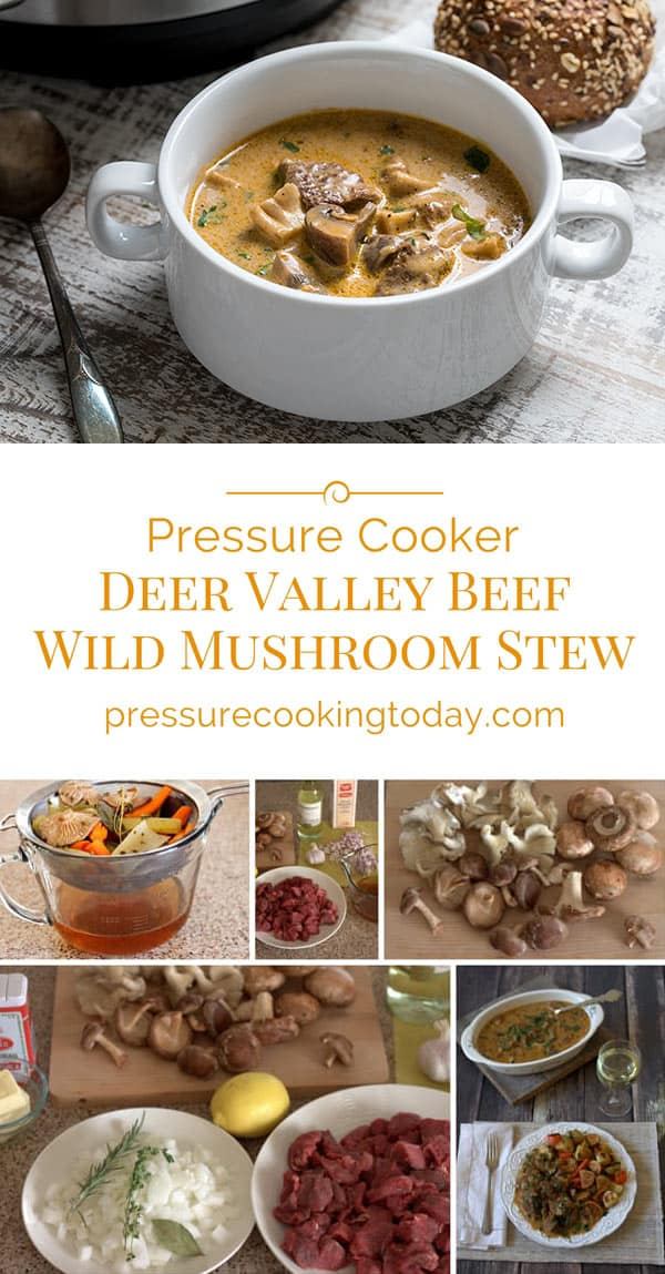ThisDeer Valley Beef And Wild Mushroom Stew is loaded with tender chunks of beef and wild mushrooms in a rich sauce madewith white wine, heavy cream and mushroom stock.